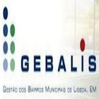 More about GEBALIS